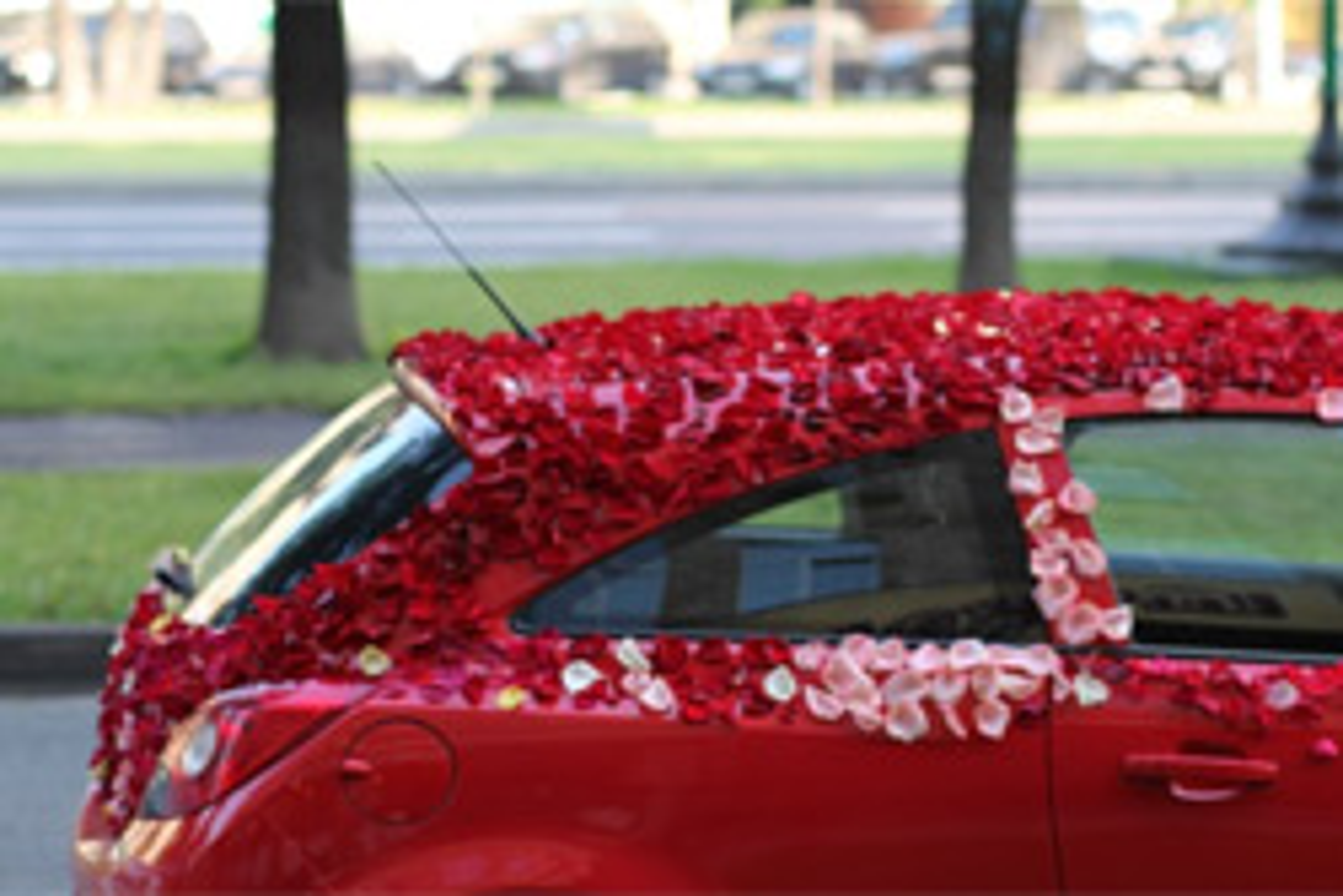 Лепестки роз в авто