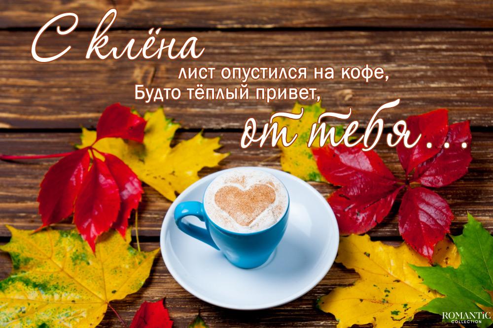 Смешные цитаты и статусы про осень