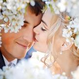 Сообщество Свадьба