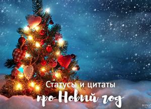 Статусы и фразы про Новый год