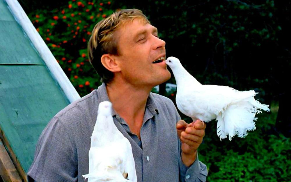 Кадры из фильма «Любовь и голуби»