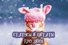 Статусы и цитаты про зиму