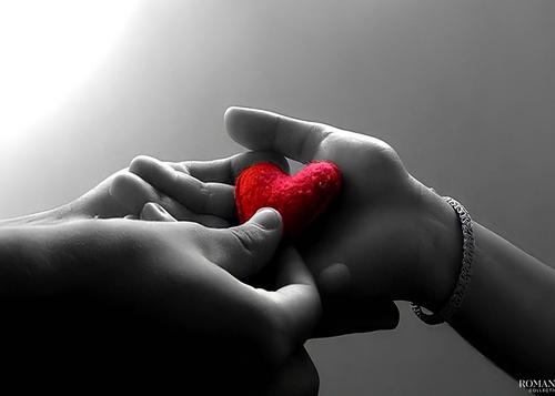 Одно сердце на двоих
