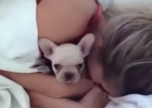 Видео: Подарок любимой в постель