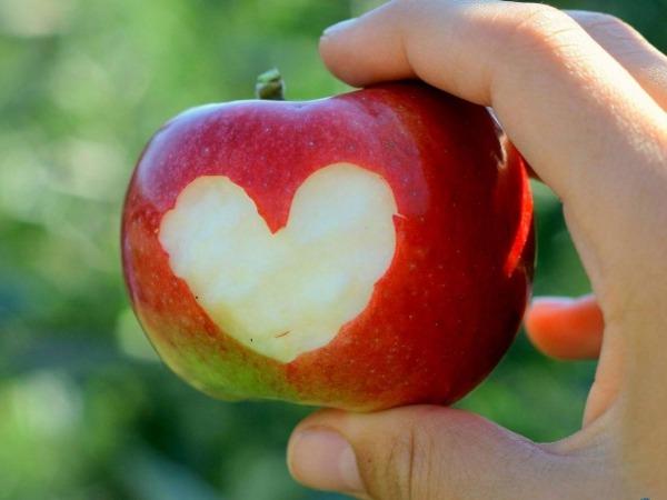 Обои о любви: Сердце из яблока