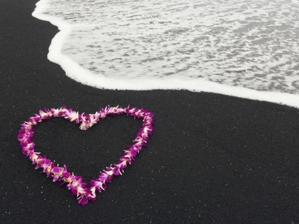 Обои о любви: Сердце из лепестков на берегу моря