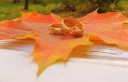 Обои о любви: Обручальные кольца