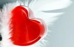 Обои о любви: Сердце и перышко