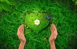 Обои о любви: Сохранить любовь