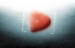 Обои о любви: Сердечко