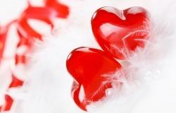 Обои о любви: Сердечки в перышках