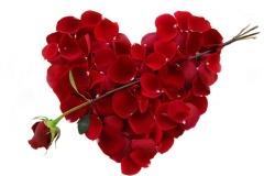 Обои о любви: Сердце из лепестков