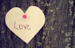 Обои о любви: Записка на дереве Love