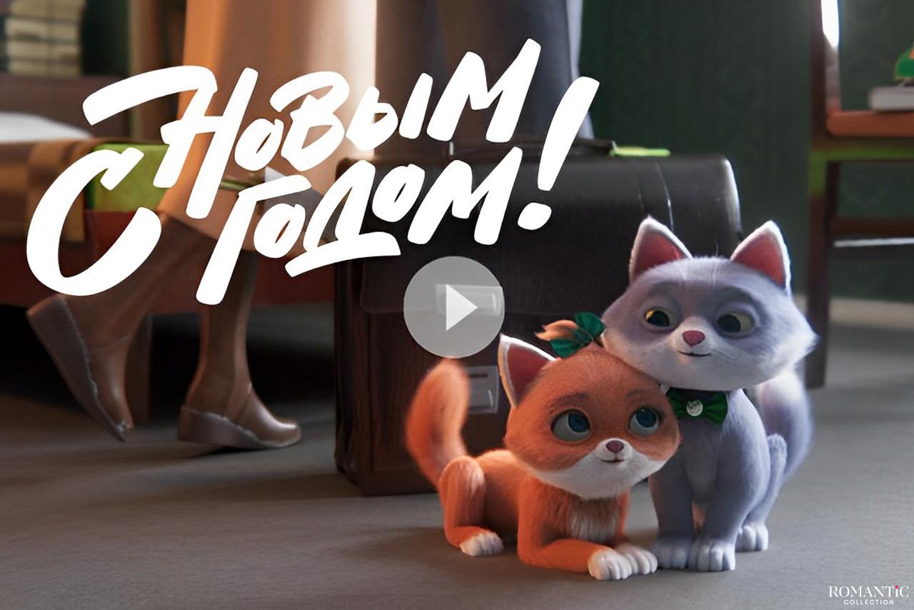 Видео: Ирония судьбы, или С новым котом!