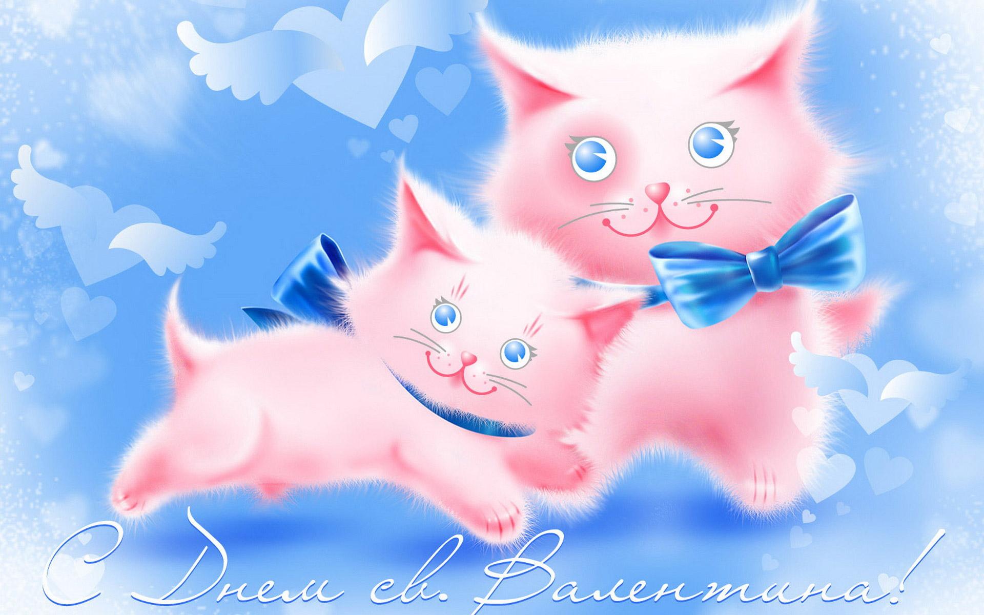 Любимой девушке открытка с котиками