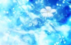 Обои о любви: Голубая нежность